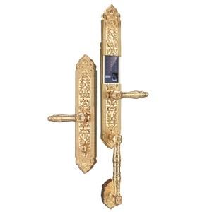 Khóa điện tử, vân tay dùng cho đại sảnh, biệt thự KASSLER KL-999