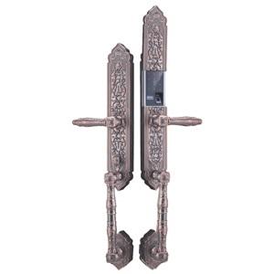 Khóa điện tử, vân tay dùng cho đại sảnh, biệt thự KASSLER KL-989
