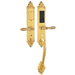 Khóa điện tử, vân tay dùng cho đại sảnh, biệt thự KASSLER KL-969 G