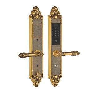 Khóa điện tử, vân tay dùng cho đại sảnh, biệt thự KASSLER KL-959 C