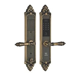 Khóa điện tử, vân tay dùng cho đại sảnh, biệt thự KASSLER KL-959 GR