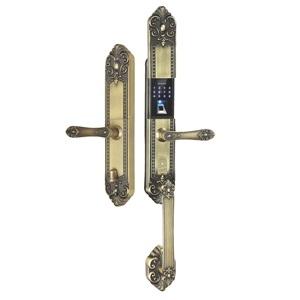 Khóa điện tử, vân tay dùng cho đại sảnh, biệt thự KASSLER KL-979 GR